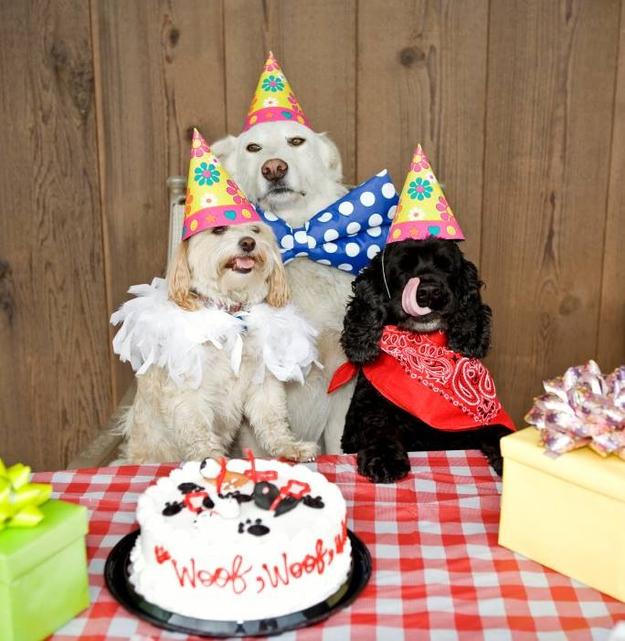 birthdays14