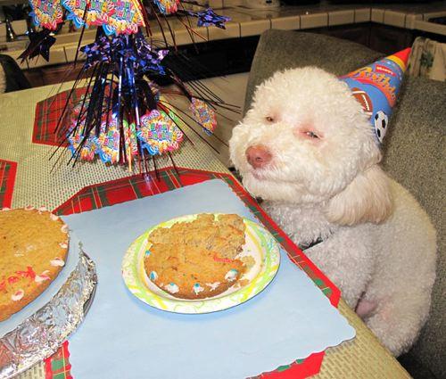 birthdays18