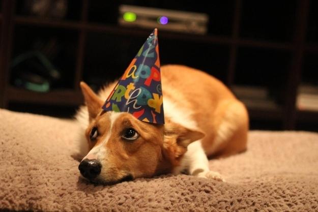 birthdays2