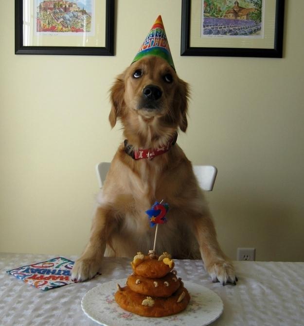 birthdays4