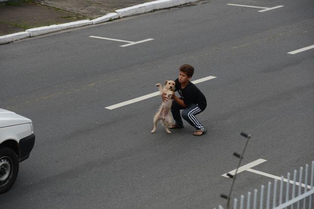 gutt-hund2