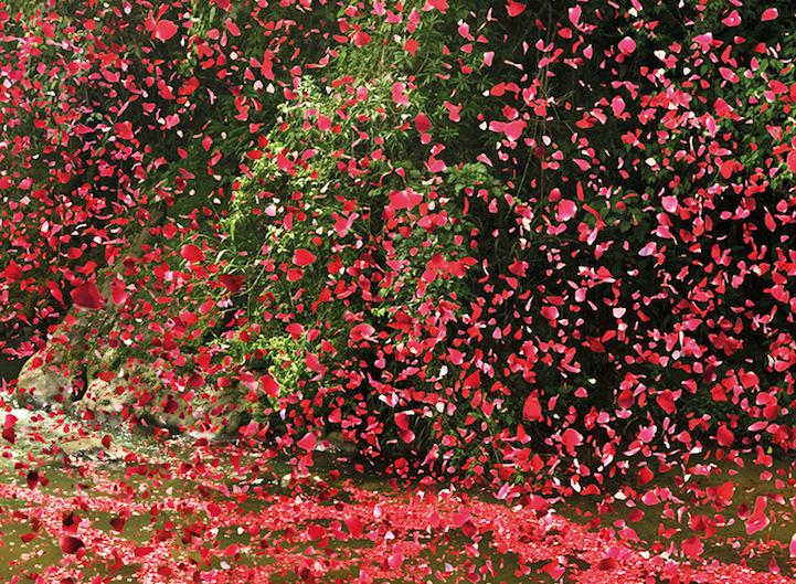 blomstervulkan8