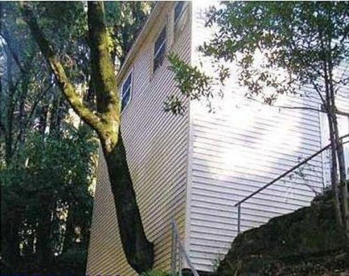 building-fails15