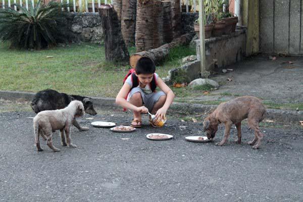 filipino-dogs