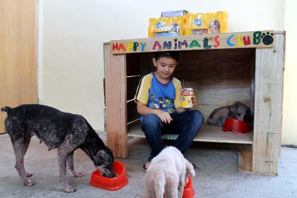 filipino-dogs5