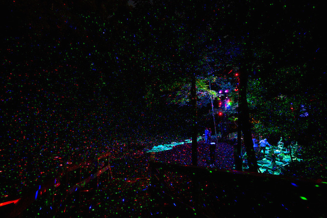 magisk skog (5)