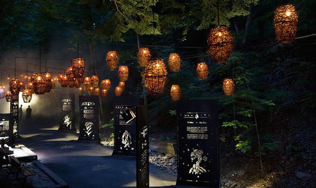 magisk skog (8)
