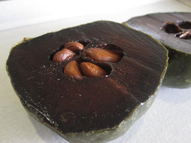 black-sapote (4)