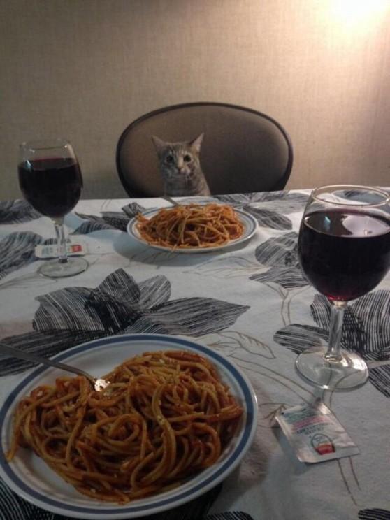 middag (5)