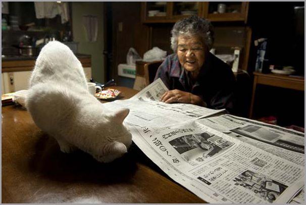 kvinne-og-katt (6)