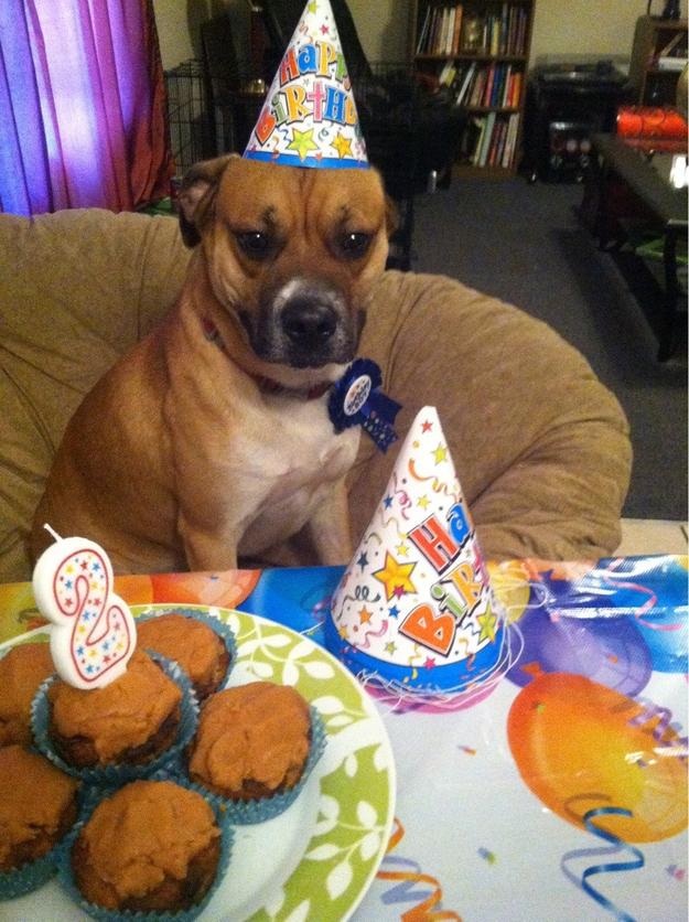 birthdays13