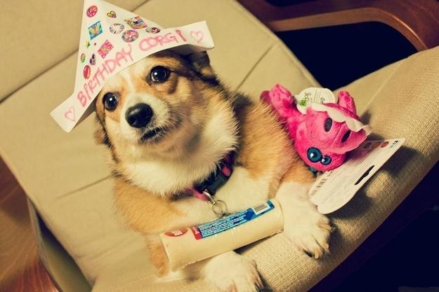 birthdays15