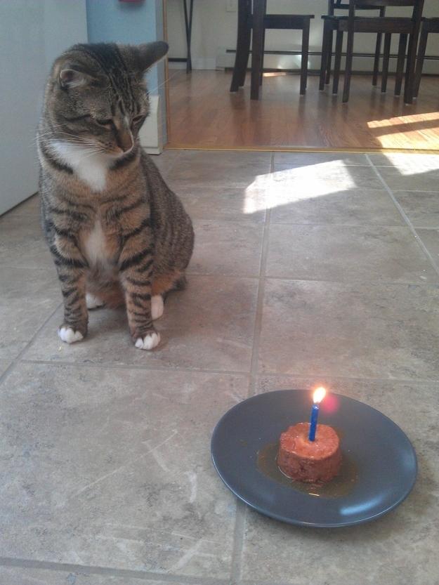 birthdays7