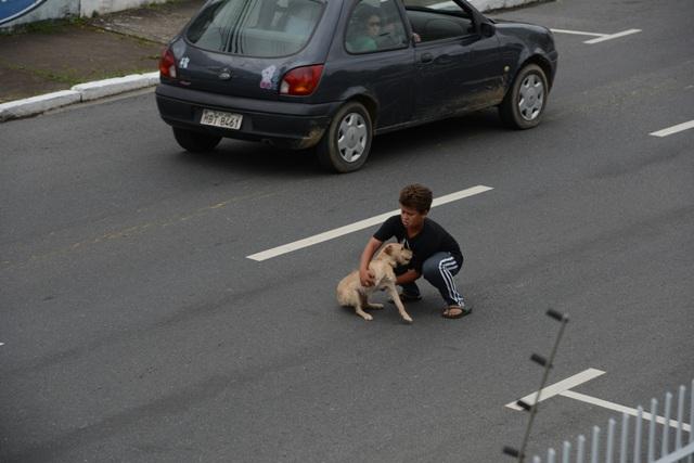 gutt-hund1