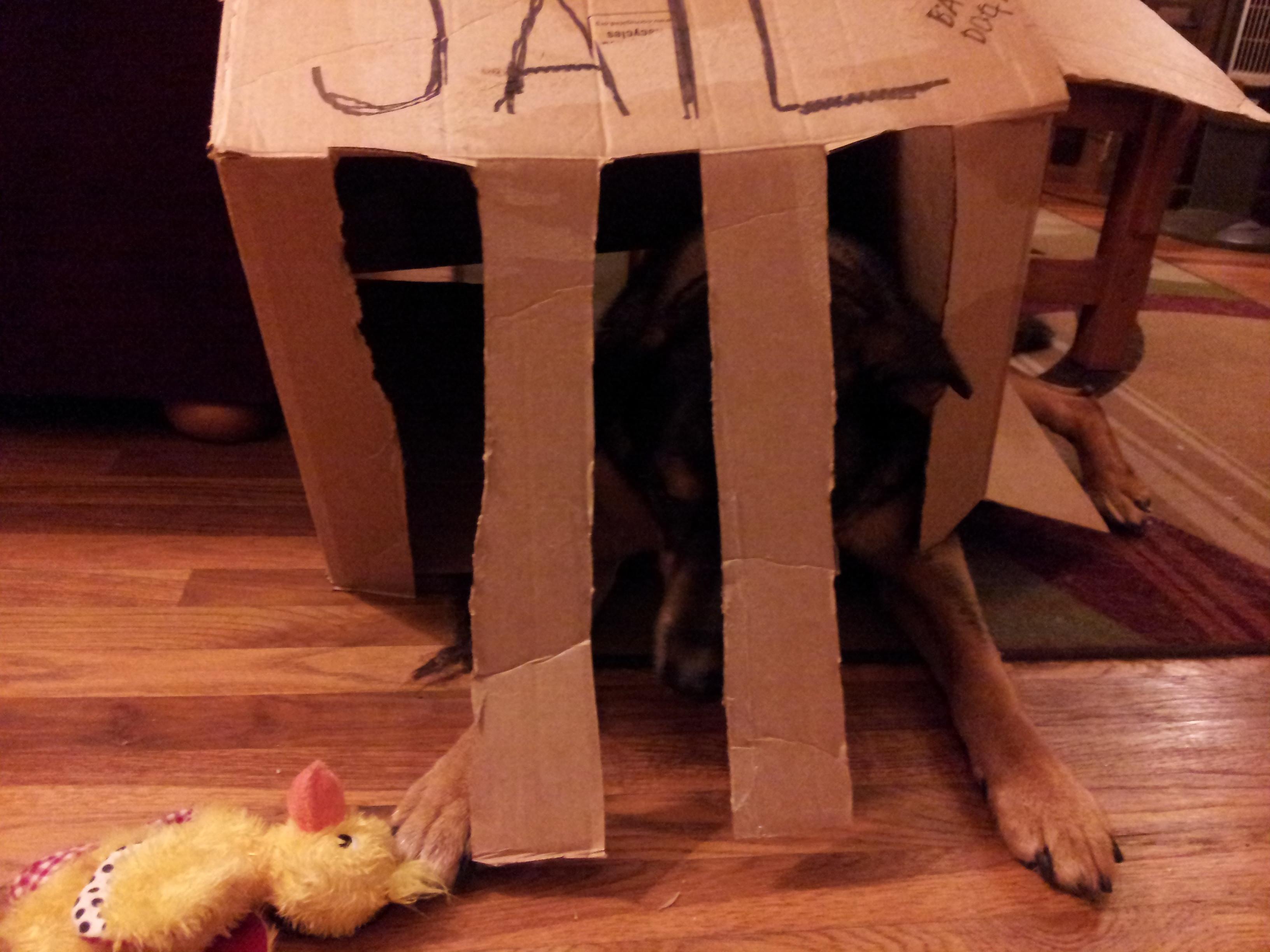 guilty8