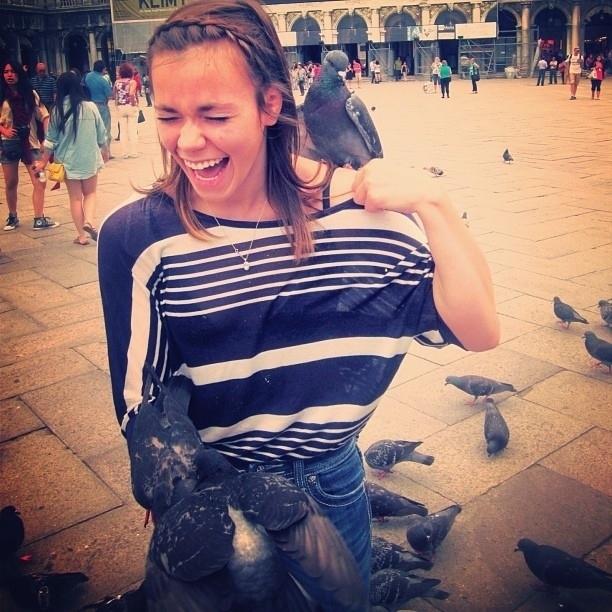 pigeons19