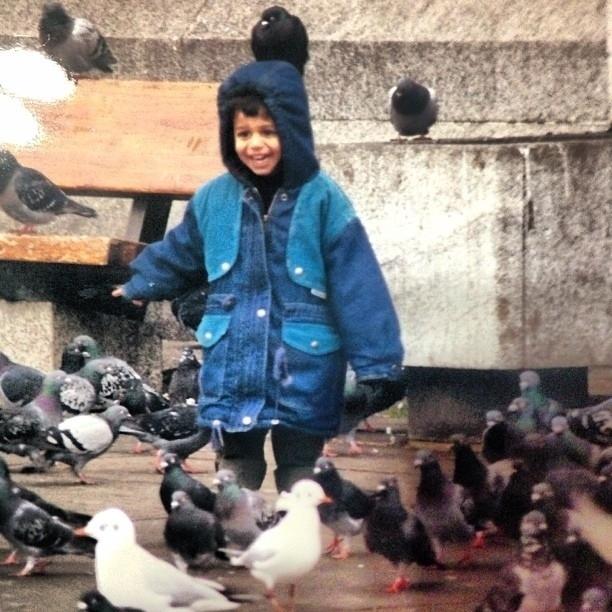 pigeons21