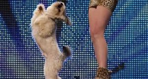 Det denne jenta og hennes hund gjør på scenen blåste alle over ende – selv Simon Cowell.