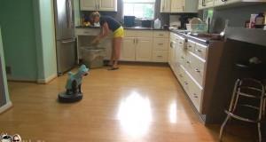 Bare enda en «katt i haikostyme som sitter på en Roomba og rengjør gulvet»-video. LOL.