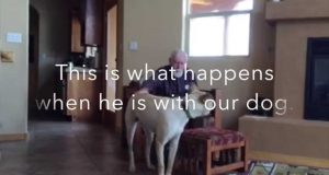 Denne mannen har Alzheimer. Se hva som skjer når han er med denne hunden. Bemerkelsesverdig.
