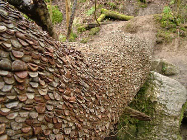 money-trees2