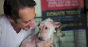 Denne hunden var døende, inntil et modig par reddet livet hennes. Tårene mine renner.