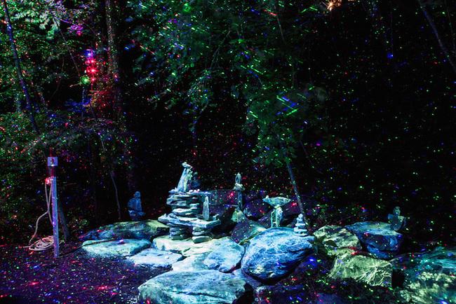 magisk skog (6)