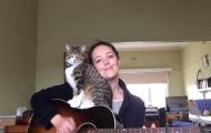 Denne duoen forsøkte å lage en sang sammen. Resultatet? Jeg brøt sammen av latter, haha.