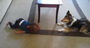 Ingen trodde på at deres hund og baby gjorde dette. Så de tok det opp på kamera.