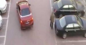 Kvinnens parkeringsplass blir plutselig stjålet. Men hennes hevn? Uslåelig.