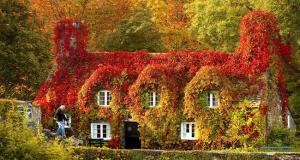 Selv om du hater kulden, må du innrømme at disse 13 stedene ser fantastisk ut om høsten.