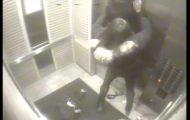 Hun var alene med hundene i heisen. Så skjedde det noe som virkelig satte en støkk i meg.