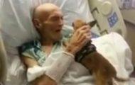 Døende mann får et siste besøk av sin elskede hund og et MIRAKEL finner sted.