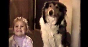Da mamma sa «smil», fikk hundens reaksjon hele familien til å bryte ut i latter.