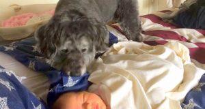 Når det er leggetid for babyen oppdager mamma plutselig at hun har en fantastisk hjelper.