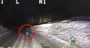 Hunden løp ut foran politibilen og begynte å bjeffe. Når du ser hvorfor vil du knapt tro dine egne øyne.