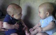 Tvillingbabyer legger merke til hverandre for første gang, og det er det søteste noensinne.
