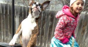 Her har du 15 bedårende grunner til hvorfor du bør la dine barn ha en hund.