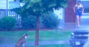 Den grusomme eieren hans etterlot ham ute i stormen. Få øyeblikk senere? Wow.