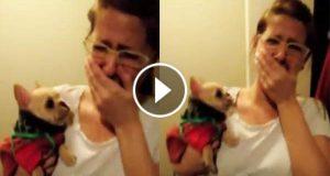 Hun sier «I love you» til hunden sin, og hun kan ikke tro responsen hans.