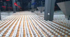 De utstyrte tusenvis av musefeller med baller, så len deg tilbake og nyt magien.