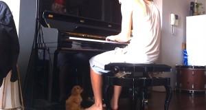 Han begynner å spille på pianoet sitt… Men følg med på den lille valpen ved føttene hans.