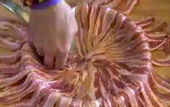 Han dekorerer hele stekepannen med bacon, for så å fylle den med DETTE. Tennene løper i vann!