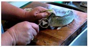 Hun tilberedte fisk til middag da noe uforklarlig skjedde.