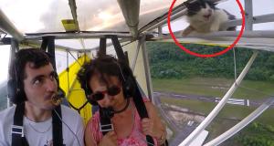 De skulle ta seg en flytur, men fikk seg en overraskelse i luften da de oppdaget DENNE blindpassasjeren.