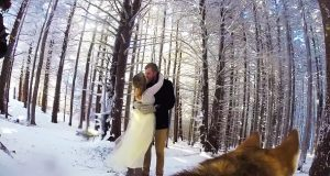 Dette paret lar hunden filme bryllupet og resultatet er bedre enn de fleste bryllupsvideoer.