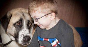 Denne lille gutten med en sjelden tilstand levde livet i frykt. Så møtte han denne trebeinte hunden.