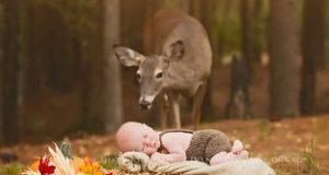 De prøvde å fotografere babygutten sin, da en nysgjerrig inntrenger dukket opp i bakgrunnen.