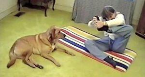 Hun prøver å gjøre litt yoga, men bryter ut i latter når hunden hennes gjør DETTE.