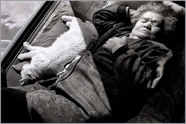 kvinne-og-katt (26)